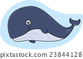 Whale cartoon 23844128