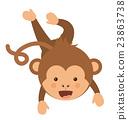 monkey, funny, vector 23863738