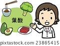 矢量圖 營養師 食品 23865415