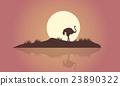 Silhouette of Ostrich scenery with reflection 23890322