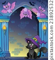 Wall alcove with Halloween cat and bats 23892532