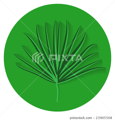 Green Palm Leaf on White Background. Vector 23905508