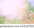 Invitation card 23916780
