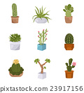 Cactuses and succulents icon set. Houseplants 23917156