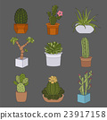 Cactuses and succulents icon set. Houseplants 23917158