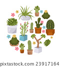 Cactuses and succulents icon set. Houseplants 23917164