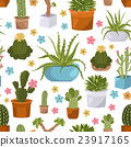Cactuses and succulents seamless pattern.  23917165