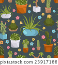 Cactuses and succulents seamless pattern.  23917166