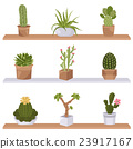 Cactuses and succulents icon set. Houseplants 23917167