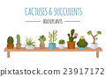 Cactuses and succulents icon set. Houseplants 23917172