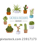 Cactuses and succulents icon set. Houseplants 23917173
