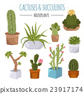 Cactuses and succulents icon set. Houseplants 23917174