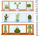 Cactuses and succulents icon set. Houseplants 23917175