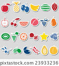 fruit theme color simple stickers icons set eps10 23933236