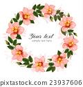 개화, 벡터, 꽃 23937606