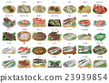 Marine Product, seafood, fish and shellfish 23939854