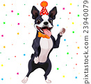 Boston Terrier Party 23940079
