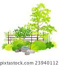 花園 院子 夏 23940112