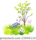 garden, yard, bloom 23940114
