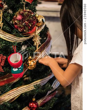 Christmas tree 23940560