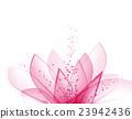 flower, flowers, petal 23942436