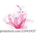 flower, flowers, petal 23942437