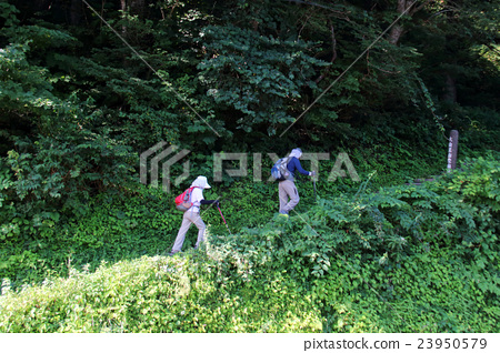 Climbing image 23950579