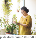 Planting Plantation Growth Housewife Activity Concept 23950583