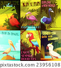 Exotic Birds 6 Posters composition Poster  23956108