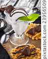 Ice Cream with chocolate candies, Mint and waffles 23956509