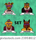 Hipster animals set dog, Large group of dog breeds 23958612