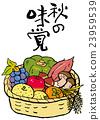 矢量 秋之美食 食材 23959539