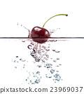 fruits splash 23969037