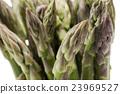 asparagus 23969527