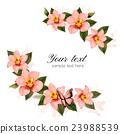개화, 벡터, 꽃 23988539