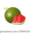 Watermelon. Isolated water melon  23996439
