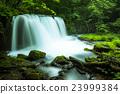 Oirase Stream Choshi Otaki 23999384