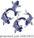 fish, fishes, carp 24023633