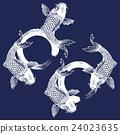 鱼 鲤鱼 淡水鱼 24023635