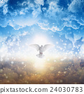 White dove descends from heaven 24030783