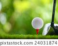 drive golf 24031874