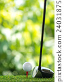 drive golf 24031875