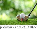 drive golf 24031877