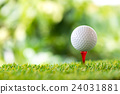 golf ball on tee 24031881