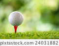 golf ball on tee 24031882