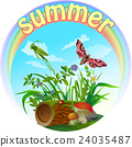 vector summer illustration  insect 2 24035487