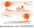 Autumn background with a tree and a bicycle. 24038065