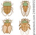 cicada, locust, large 24046055