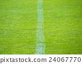 เส้นสีขาวของชิบะ 24067770