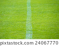 White Line, turf, lawn 24067770